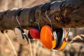 Hörschutz auf Baumstamm