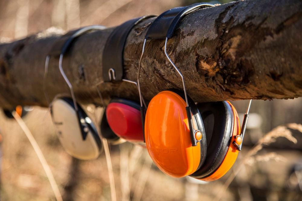 Gehörschutz auf Baumstamm